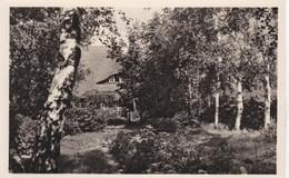 Ostseebad Prerow Eschenhaus - Allemagne