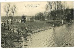 CHAVILLE Etang De Brisemiche BF 11 - Chaville