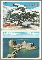 LIBAN Carnet 10 CP Différentes Vues Diverses Edit.:Telko-Sport - Liban