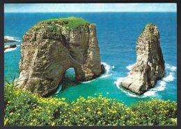 CP Krüger 987.118 - Beyrouth Grotte Aux Pigeons -Beiryut Pigeons Rocks - Liban