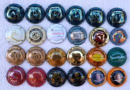 D-002 Lot De 24 Capsules De Bouteilles De Champagne - Champagne & Mousseux