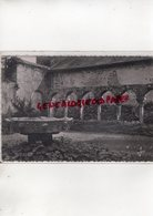 29- DAOULAS- LE CLOITRE ROMAN DU XII E SIECLE -FINISTERE - Daoulas