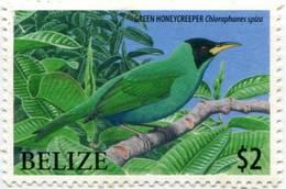 Lote Be8, Belize, 2009, Sello, Stamps, 5 V, Endangered Birds Of Belize - Belice (1973-...)