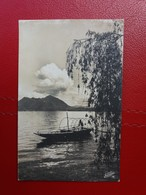 Barca Sull Lago - Fotografica Viaggiata Il 1.11.1941, Ed. Fotocelere, Torino - Cartoline
