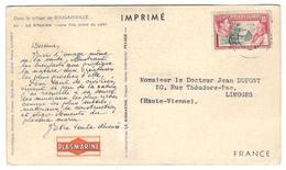 12066 - Pub PLASMARINE - Timbres