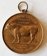 Médaille 1911 Royaume De Belgique Amélioration Race Bovine Luxembourg Concours De Canton Koninkrijk Belgie - Belgium