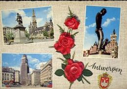 Antwerpen - Formato Grande Viaggiata Mancante Di Affrancatura – E 9 - Cartoline