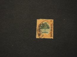 SUD AFRICA - SERVIZIO - 1926 ALBERO 6 P. - TIMBRATO/USED - Servizio