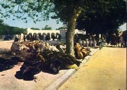 Djerba - Tunisie - Le Marche Des Posteries A Houmt Souk - Formato Grande Viaggiata – E 9 - Cartoline