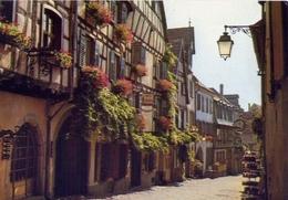 Riquewihr - Alsace - Les Vielles Maisons Fleuries De La Dand'rue - Formato Grande Non Viaggiata – E 9 - Cartoline