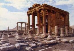 Syria - Palmyra - Baalshmin's Temple - Formato Grande Non Viaggiata – E 9 - Cartoline
