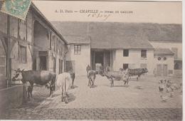92 - CHAVILLE - FERME DE GAILLON - ANIMAUX DE LA FERME - Chaville