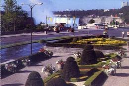 Niagara Falls - The Canadian Horseshoe - Formato Grande Non Viaggiata – E 9 - Cartoline