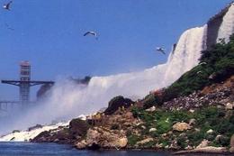 Niagara Falls - The Gorge Observation Tower - Formato Grande Non Viaggiata – E 9 - Cartoline