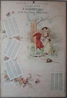 TOULOUSE - CALENDRIER DE1895 - IMPRIMERIES MERIDIONALE SALSE AINE M.SALZE-PETEL Succr 84-86 RUE RIQUET - TOULOUSE - Calendari