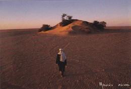 République Du Niger - L'Arbre Perdu Du Ténéré - Entre Adrar Bous Et Chirfa - Niger
