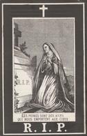 Lombise 1890-augustin Wilmus - Santini