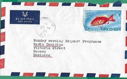 ! - Grenade (Grenada) - Enveloppe Avec 1 Timbre - Envoi Vers Roseau (Domenica) - Grenade (1974-...)