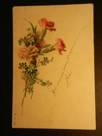 19841) GAROFANI NON VIAGGIATA MA SCRITTA 1902 CIRCA - Fleurs