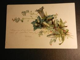 19841) FIORI AZZURRI NON VIAGGIATA MA SCRITTA 1902 - Fleurs