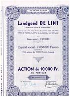 Action Ancienne - Société Anonyme Landgoed De Lint - Titre De 1949 - Banque & Assurance