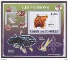0275 Comores 2009 Vissen Fish Poisson S/S MNH Imperf - Spinnen