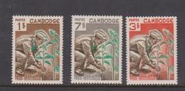 Cambodia SG 199-201 1966 Tree Day ,mint Never Hinged - Cambodge