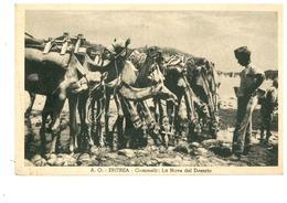 ERITREA ITALIANA - Erythrée