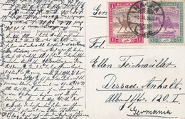 Sudan: 1908: Post Card Halfa To Dessau - Sudan (1954-...)