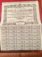 Cie  Générale  Des  SALINS  De  La  MÉDITERRANÉE ------Action  De  500 Frs - Agriculture