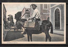 SAINT THOMAS V.I USA Native On A Donkey Habitant Sur Un âne Taylor's Book Store - Vierges (Iles), Amér.