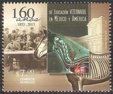 2013 México VETERINARIA Caballo/ 160 Years Of Veterinary Education In Mexico / Horse Stamp MNH - México