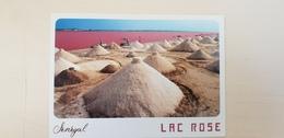 SÉNÉGAL  : Le Lac Rose - Le Sel - Senegal