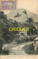Guadeloupe, St Claude, Un Coin Pittoresque, Bel Affranchissement 1924 - Guadeloupe