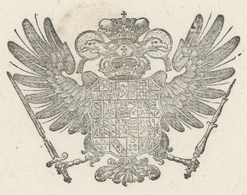 Konstanz Am Bodensee Allemagne 1801 Héraldique Laisser Passer   39 Cm.x 23 Cm. - Documentos Históricos