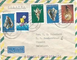 Brasil Brazil 1977 Palmeira Dos Indios Vasum Murex Strombus Shells Handstamp Cover - Cartas