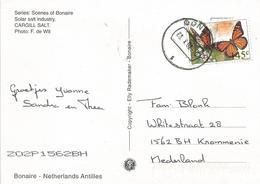 Netherlands Antilles 2002 Bonaire Monarch Butterfly Danaus Plexippus Viewcard - Vlinders