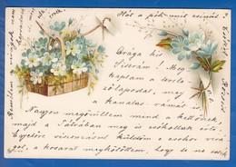 Blumen; Fleurs; 1900 Stempel Kecskemet, Ungarn - Blumen