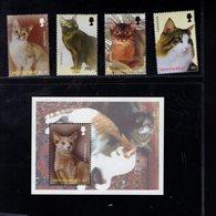693372004 MONTESERRAT POSTFRIS MINT NEVER HINGED POSTFRISCH EINWANDFREI SCOTT 1099 1103 CATS - Montserrat