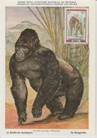 Congo Carte Maximum  Animaux 1972 Gorille 322 - Congo - Brazzaville