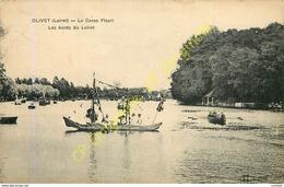 45.  OLIVET .  Le Corso Fleuri . Les Bords Du Loiret . - Autres Communes