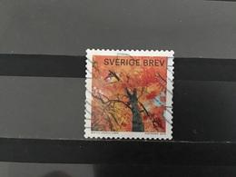 Zweden / Sweden - Herfstgloed 2016 - Zweden