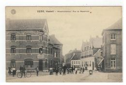 3230, Hasselt  -  Maestrichterstraat / Rue De Maestricht - Hasselt
