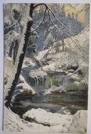 Photochromie, Winterlandschaft, 1906 Aus Krummhübel  - Fotografie