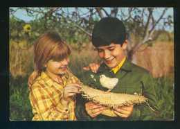Ed. C. Y Z. Nº 7107. Circulada Sos Del Rey Católico 1976. - Niños