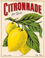 """D8967 """"SCIROPPO - CITRONNADE - PURE SUCRE - ANNO 1930  """".  ETICHETTA ORIGINALE - Frutta E Verdura"""
