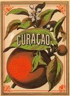 """D8970 """"SCIROPPO - CURACAO - FINE XIX SEC.""""  ETICHETTA ORIGINALE - Frutta E Verdura"""
