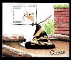 Hoja Bloque De Benin Nº Yvert HB-48 **  GATOS (CATS) - Benin – Dahomey (1960-...)