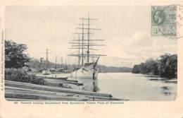 British Guyana / 28 - Vesseis Loading Greenheart From Sproston's Timber Fiats At Demerara - Antilles