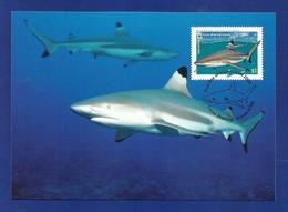Australien / Cocos (Keeling) Islands  2005  Mi.Nr. 422 , Blacktip Reef Shark - WWF Maximum Card - 21 June 2005 - Cocos (Keeling) Islands